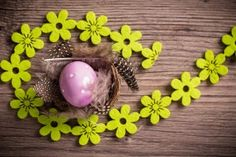 Easter Egg Feathers Flowers Mood HD Wallpaper