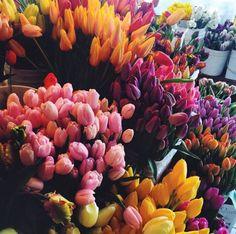 ✫ ✫ ✫ ✫ ♥ ❖❣❖✿ღ✿ ॐ ☀️☀️☀️ ✿⊱✦★ ♥ ♡༺✿ ☾♡ ♥ ♫ La-la-la Bonne vie ♪ ♥❀ ♢♦ ♡ ❊ ** Have a Nice Day! ** ❊ ღ‿ ❀♥ ~ Wed 07th Oct 2015 ~ ~ ❤♡༻ ☆༺❀ .•` ✿⊱ ♡༻ ღ☀ᴀ ρᴇᴀcᴇғυʟ ρᴀʀᴀᴅısᴇ¸.•` ✿⊱╮