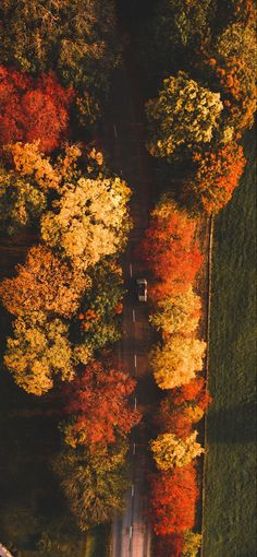 Autumn, Fall, Wallpaper S, Landscape Photography, Photos, Leaves, Seasons, Spring, Nature