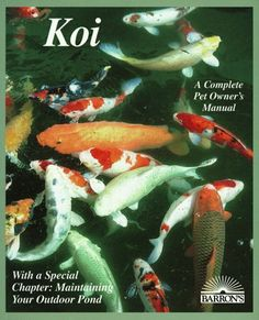 Koi: Everything about Selection, Care, Nutrition, Diseases, Breeding, Pond Design and Maintenance, and Po (Barron's Complete Pet Owner's Manuals) by George C. Blasiola http://www.amazon.com/dp/0812035682/ref=cm_sw_r_pi_dp_Av9sub12NZW5E
