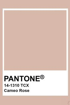 Pantone Cameo Rose Pantone colo palette for art and home decor