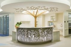 Australian Interior Design Awards | Project Mater Hospital Poche Van Norton Special Care Nursery, NSW | Design Practice: Alexandra Kidd Design | entry reception