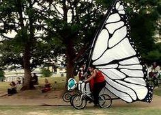 butterfly bike