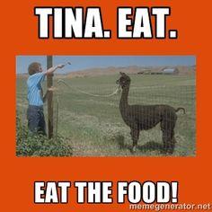 TINA, you fat lard!