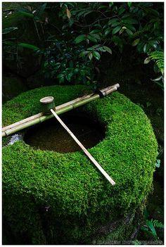 Daitoku-ji Temple, Koto-in, 高桐院, Zen Garden, Kyoto