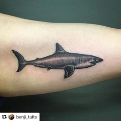 #Repost @benji_tatts with @repostapp Just keep swimming. Fun one for today. Thanks kyumi! #megalodonshark #blackandgrey #shark #tattoo #tattoocloud #borneoink #iwasborneoinked