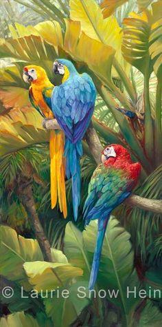 Laurie Snow Hein - Zeitgenössische Malerin - Öl - Tropische Papageien - #Hein #Laurie #Malerin #Öl #Papageien #Snow #Tropische #zeitgenössische Tropical Birds, Tropical Art, Exotic Birds, Colorful Birds, Bird Illustration, Illustrations, Jungle Art, Bird Pictures, Watercolor Bird