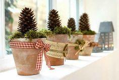 inspirierende-fensterdeko-zum-weihnachten- zapfen in töpfen - 27 interessante Vorschläge für Fensterdeko