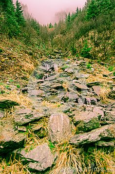 Photo about Stony Uphill View in Transylvania`s foggy mountains. Image of rocks, back, ancient - 70158150 Foggy Mountains, Stony, Rocks, Stock Photos, Nature, Travel, Image, Naturaleza, Viajes