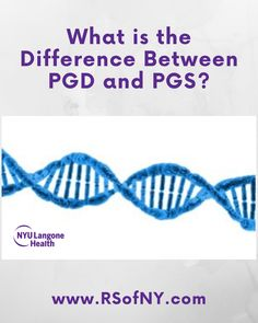 Learn more about PGD and PGS, the differences and when it may be important to inquire about these tests if you're trying to get pregnant. Trying To Get Pregnant, Getting Pregnant, Doula, Genetics, Different, Fertility, How To Get, Learning, Link