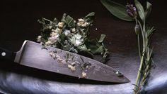 Fragrant Tuscan Herb Salt
