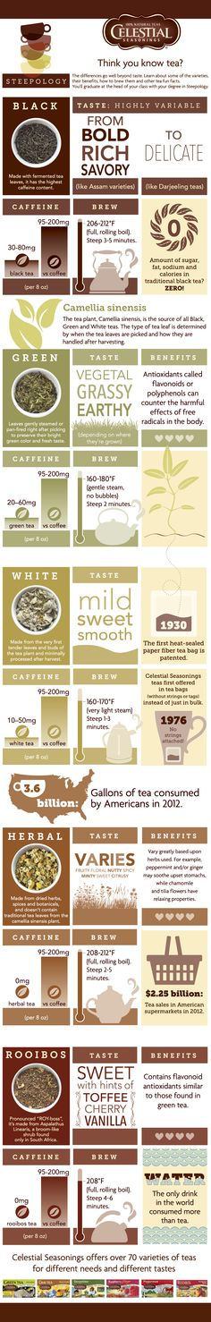 Cool Steepology Infographic from @celestialtea