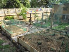 Backyard chicken coop as part of a grander garden plan. #yandeloracoops