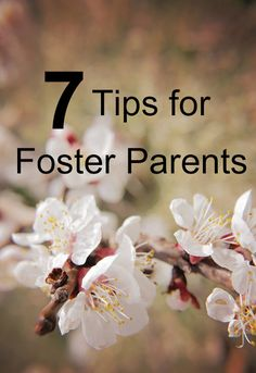 Foster care is mostly a learn as you go type thing, but I do have several tips for foster parents just starting the process.