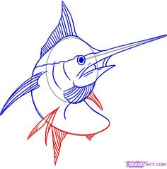 how to draw a marlin step 5