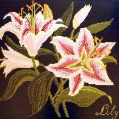 Lily   Elizabeth Bradley {I think this one is my favorite}