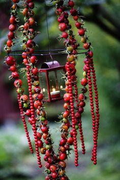 Ruusun kiulukoista ja pihlajanmarjoista teet helposti näyttäviä koristeita.   Viherpiha