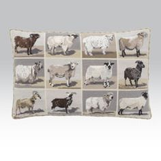 Beautiful Sheep, a needle point kit for all sheep and lamb lovers. Featuring different breeds