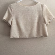 Topshop Blush Pale Pink Glitter Crop Top, 2 Very pretty but I don't wear it at all anymore. 13.5 inch length, 17 inch width when flat, lightly worn condition and fully lined. The texture is from a metalized yarn. Can be dressed up or down considerably. Size 2. Topshop Tops Crop Tops