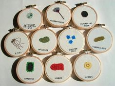 For the microbiology nerd: cross-stitched microbes.