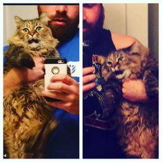 My friends cat hates when I catsit. http://ift.tt/1riqqPC