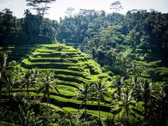 Some argue that the best way to experience a place as serene as Ubud, Bali, is by yourself. That way you'll really be able to take in sights such as the rice fields and Sacred Monkey Forest. It's also one of the most well-known spa destinations in the world, so make the trip about you and pamper yourself.