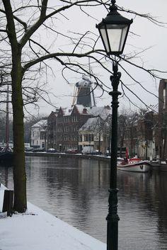 Madelief: Holland, Schiedam