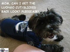 Team fanaticism at its finest - your pets & babies (Spawties) play here. Sports Team Apparel, Vancouver Canucks, My Boys, Your Pet, Dog, Pets, Diy Dog, Doggies, Dogs