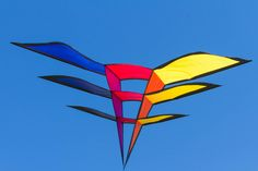 Beautiful solid colors stand out over the perfect sky-blue background in this shot of a large Triangulation Delta kite. T.P. (my-best-kite.com)