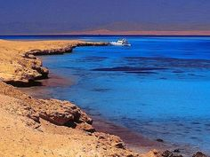 Safaga Shore Excursions; Enhance your cruise vacation when you are calling at Safaga Port. Travel to Luxor attractions with our top quality shore trips, Local excursions from Safaga port to different places in Red Sea coast and Luxor. Find trips & other things to do with best service guaranteed. #Safaga #Redsea #Egypt