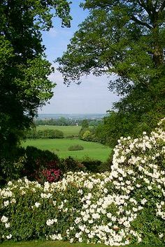 View from the Mausoleum, Bowood Gardens, Wiltshire, UK