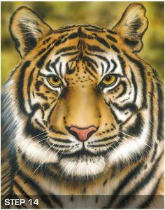 Tiger Wildlife Airbrush Anleitung