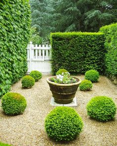 What every garden needs -a clever structure, boxwood spheres and contrast. I love how Wendy Uvino captures the charms of even the smallest…