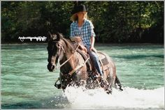 Amber Marshall. Actress from the TV show Heartland!