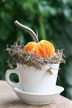 Sweet - coffee cup with tiny pumpkin