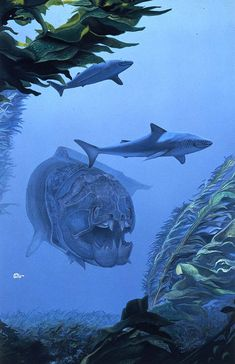 Dunkleosteus - April Lawton