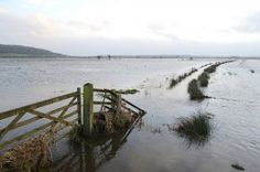 UK weather: marines drafted in to aid with evacuation of Somerset Levels.