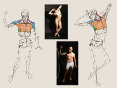 Analytical Figure Drawing - CGMA 2D Academy | Fu-er Toh