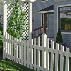 Picket fence with concave curvature at top of fence sections. The curve was probably cut after the fence sections were assembled.