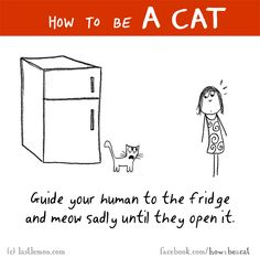 Cats: HOW TO BE A CAT: Guide your human to the fridge and meow sadly until they open it.