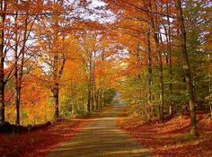 Giant City State Park, Southern Illinois....fall is coming