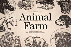 Vintage Animal Farm by MARTINI Type Designer on @creativemarket