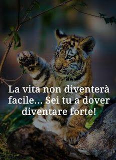 Patrones Tutorial and Ideas Soul Quotes, Life Quotes, Verona, Italian Quotes, Sun Tzu, Tumblr Quotes, Disney Quotes, Beautiful Words, Techno