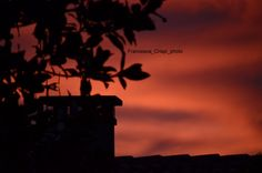 #sky #tree #contrast #black #nature #sunset #colourful #colours #italy #nikon  #place #amazing