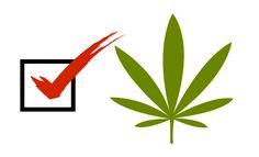 Cannabis Legalization in November