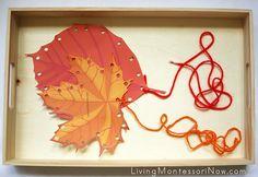 Fall Leaf Lacing Activity - Deb Chitwood