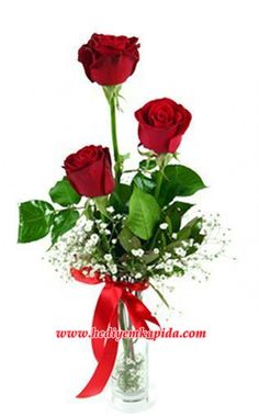 Balıkesir Çiçek Balıkesir Buse Çiçek Farkıyla Vazoda 3 Kırmızı Gül         Sevimli cam vazoda yeşilliklerle zenginleştirilmiş 3 adet kırmızı gül   Çiçek içeriği: Çiçekler: 3 adet kırmızı gül Kullanılan diğer ürünler: Yeşillikler  Onun kalbine giden yol kırmızı güllerden geçiyor, sevdiklerinizi mutlu etmek bir çiçek siparişi kadar kolay.