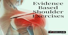 Evidence Based Shoulder Exercises | The Prehab Guys
