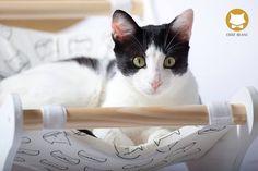 Chat Blanc Cat Furniture // chatblanc.eu - handmade cat furniture #cat #chat #gato