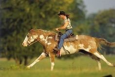 Horseback riding is the featured activity at Southern Cross Guest Ranch. Horses outnumber guests by more than 7 to 1.http://www.ranchseeker.com/index.cfm/pg/listing_details/id/12221/frompopup/0